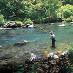 McCloud River Art Teter Guide Service