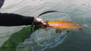 September Rainbow Fall River | Art Teter Guiding