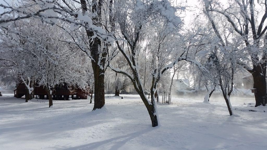 Winter - Fall River Mills - artteter.com