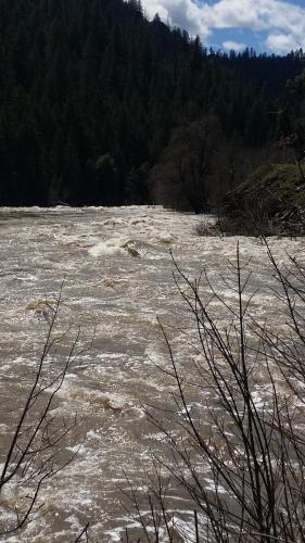 Art Teter - Fall River Fly Fishing - fishing report