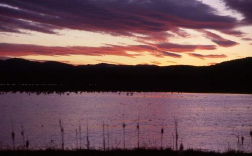 sunset fall river art teter guide service